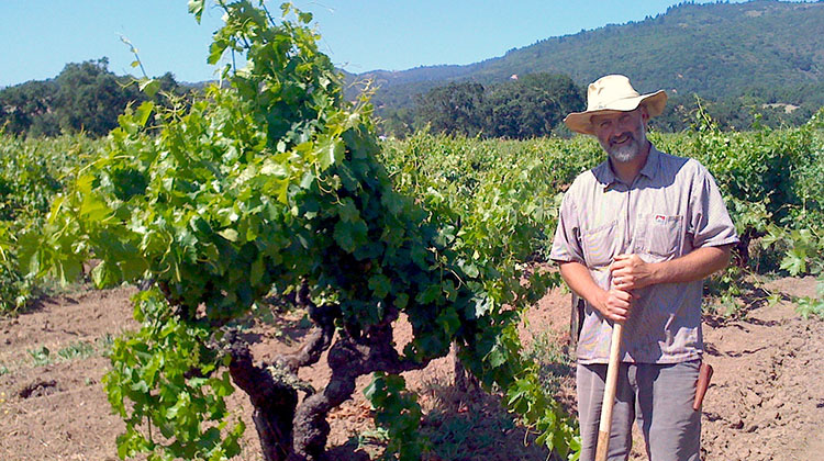 Wine grower Will Bucklin